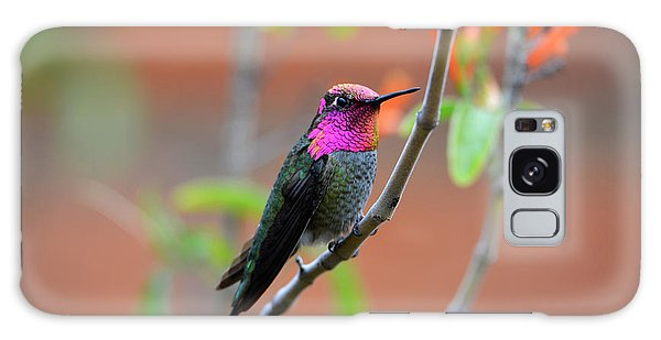 Pink And Gold Anna's Hummingbird Galaxy Case