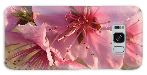 Pink Blossoms Galaxy Case by Barbara Yearty