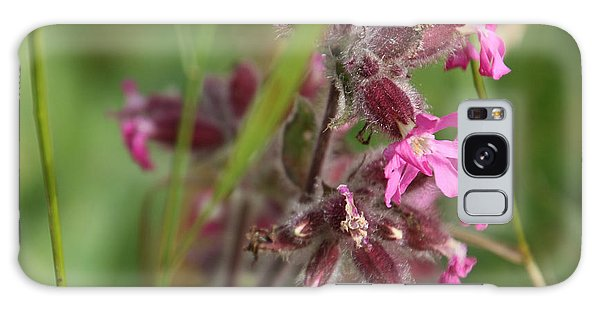 Pink Campion In August Galaxy Case