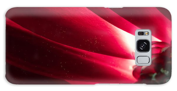 Pink Chrysanthemum Flower Petals  In Macro Canvas Close-up Galaxy Case
