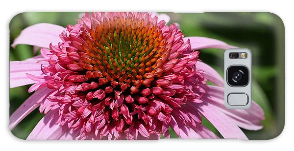 Pink Coneflower Close-up Galaxy Case