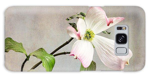 Pink Cornus Kousa Blossom In Creamer Galaxy Case