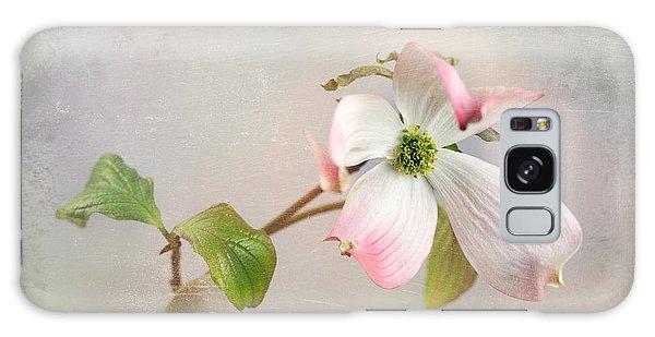 Pink Cornus Kousa Dogwood Blossom Galaxy Case by Betty Denise