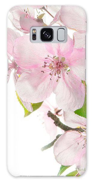 Pink Crabapple Blissoms Galaxy Case
