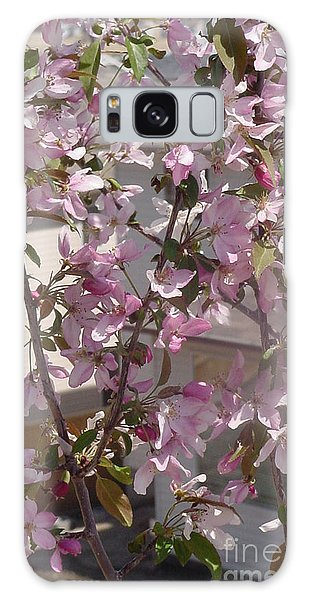 Pink Crabapple Branch Galaxy Case