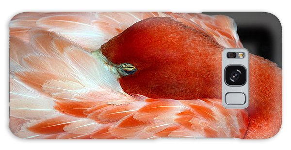 Pink Flamingo Galaxy Case by Inspirational Photo Creations Audrey Woods
