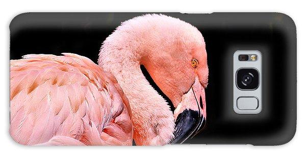 Pink Flamingo On Black Galaxy Case