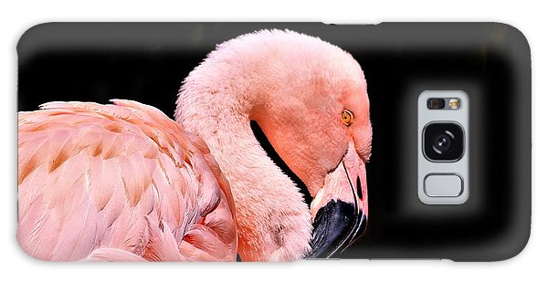 Pink Flamingo On Black Galaxy Case