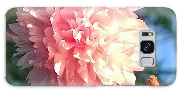 Pink Flower Bloom In Sunset. #flowers Galaxy Case