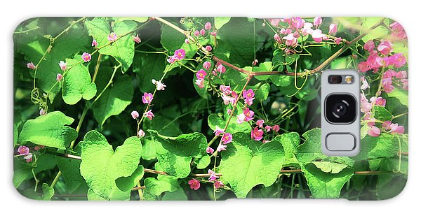 Galaxy Case featuring the photograph Pink Flowering Vine2 by Megan Dirsa-DuBois