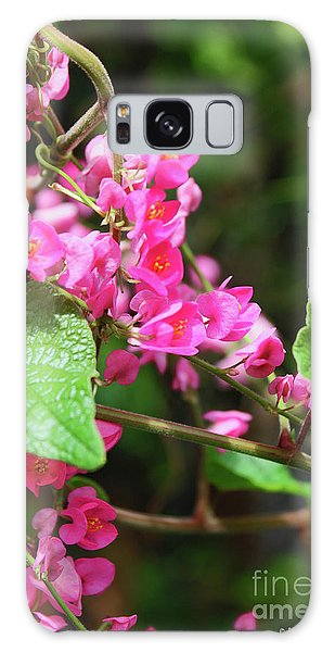 Galaxy Case featuring the photograph Pink Flowering Vine3 by Megan Dirsa-DuBois