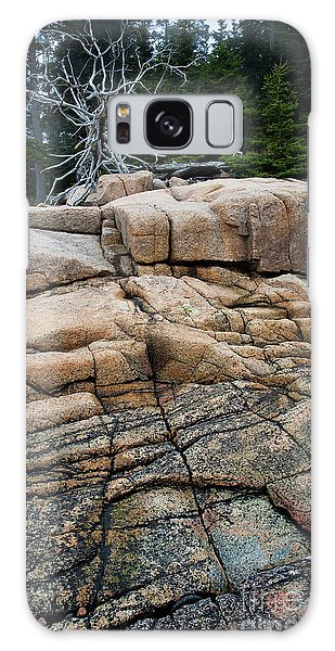 Pink Granite And Driftwood At Schoodic Peninsula In Maine  -4672 Galaxy Case