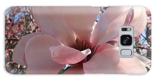 Pink Magnolia In Full Bloom Galaxy Case by Dora Sofia Caputo Photographic Art and Design