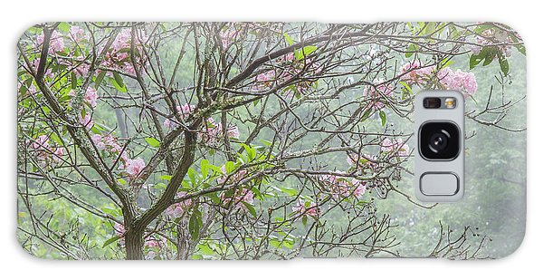 Galaxy Case featuring the photograph Pink Mountain Laurel by Chris Scroggins
