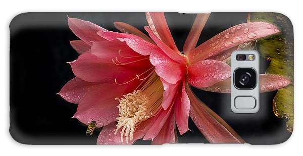 Pink Orchid Cactus Flower Galaxy Case
