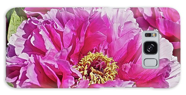 Pink Peony Galaxy Case by Joan Reese