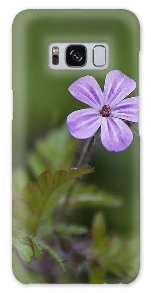 Pink Phlox Wildflower Galaxy Case