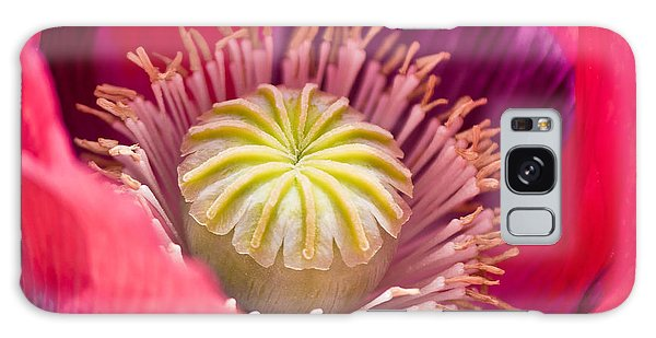 Pink Poppy Flower Galaxy Case