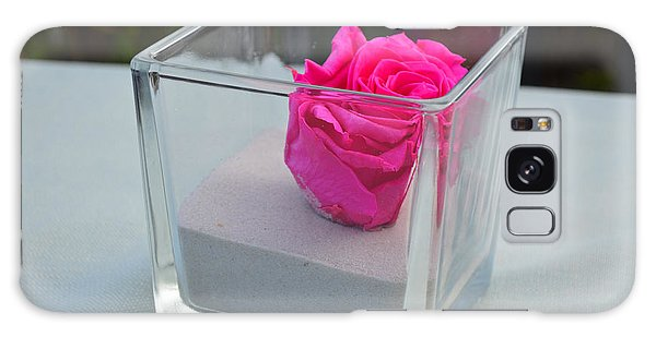 Pink Rose In Venice Galaxy Case