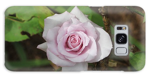 Pink Rose Galaxy Case by Jerry Battle