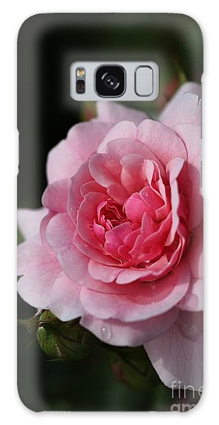 Pink Shades Of Rose Galaxy Case