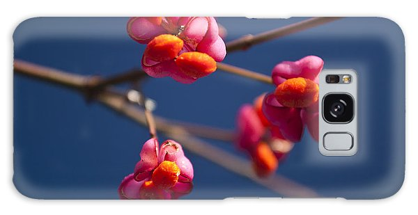 Pink Spindle Fruit Galaxy Case