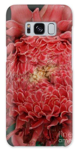 Pink Torch Ginger 1 Galaxy Case