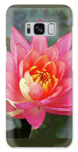 Galaxy Case featuring the photograph Pink Water Lily Beauty by Amee Cave