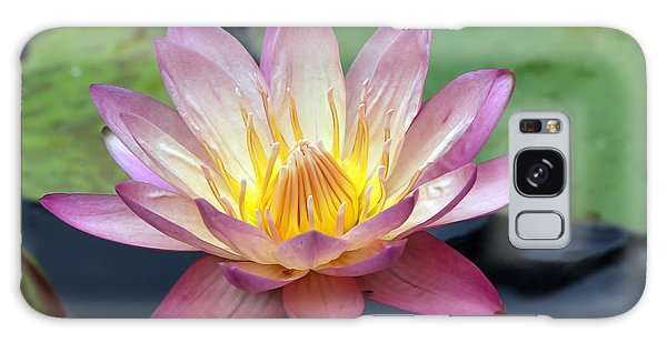 Pink Water Lily Galaxy Case