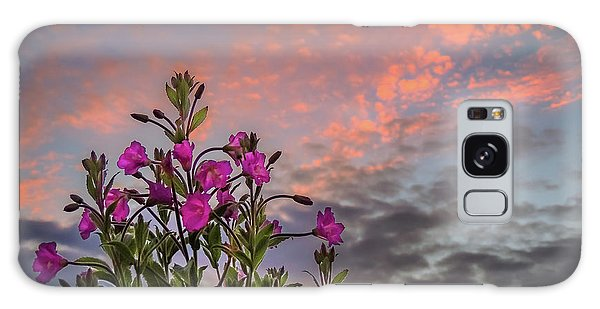 Galaxy Case featuring the photograph Pink Wildflowers At Sunset by James Truett