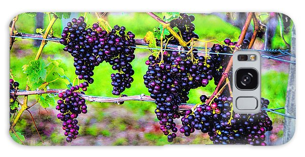 Pinot Noir Grapes Galaxy Case by Rick Bragan