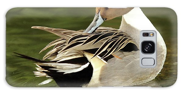 Pintail Drake Grooming Galaxy Case by Max Allen