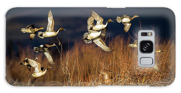 Pintails And Wigeons Galaxy Case