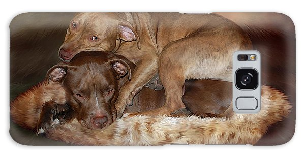 Pitbulls - The Softer Side Galaxy Case