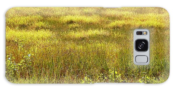 Plains At The Bosque Galaxy Case