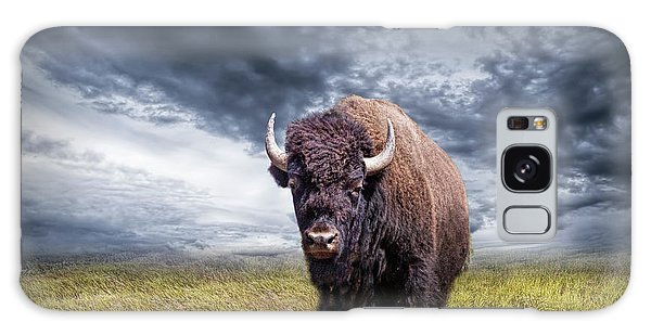 Plains Buffalo On The Prairie Galaxy Case