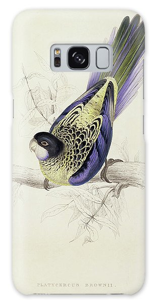 Parakeet Galaxy Case - Platycercus Brownii, Or Browns Parakeet by Edward Lear