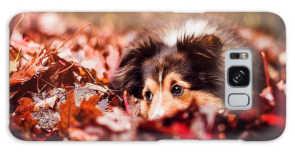Autumn Galaxy Case - Playful Autumn Dog by Fbmovercrafts