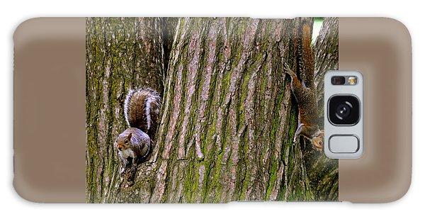 Playful Squirrels  Galaxy Case