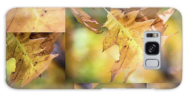 Pleasures Of Autumn -  Galaxy Case