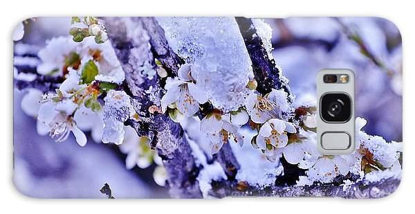 Plum Blossoms In Snow Galaxy Case
