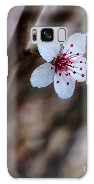 Plum Flower Galaxy Case
