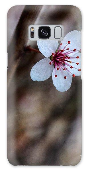 Plum Flower Galaxy Case