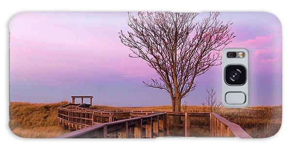 Plum Island Boardwalk With Tree Galaxy Case