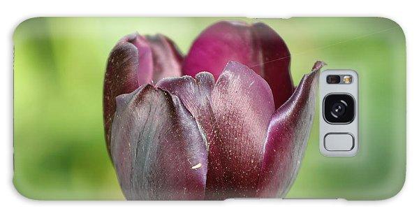 Plum Tulip Galaxy Case