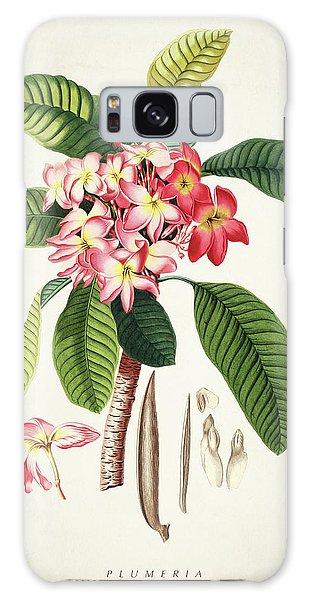 Botanical Garden Galaxy Case - Plumeria Botanical Print by Aged Pixel