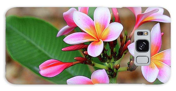 Bradenton Galaxy Case - Plumeria Flower Art - Tropical Queen - Sharon Cummings by Sharon Cummings