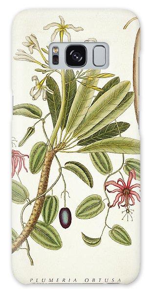 Botanical Garden Galaxy Case - Plumeria Obtusa Botantical Print by Aged Pixel