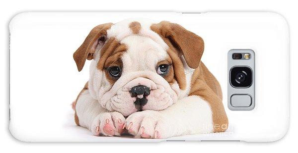 Po-faced Bulldog Galaxy Case
