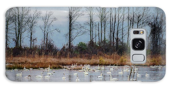 Galaxy Case featuring the photograph Pocosin Lakes Nwr by Donald Brown